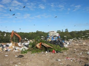 landfill & transfer stations